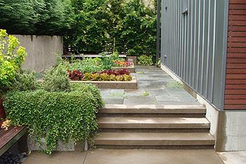 Landscape Architect versus Design/Build Firms - Seattle ...
