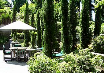 North Broadmoor Garden