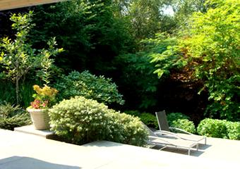 Hunts Point Garden