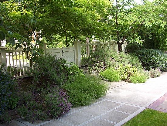 North Capitol Hill Garden